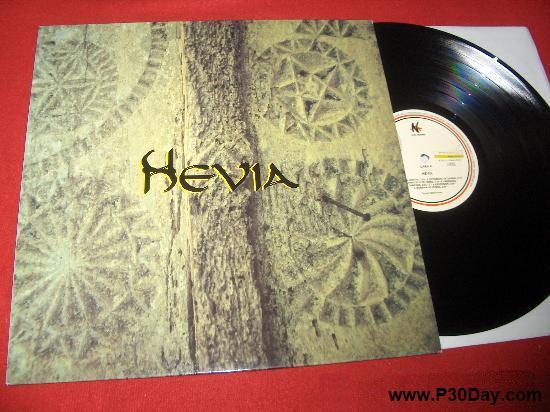 دانلود آهنگ شاد بیکلام از آهنگساز اسپانیایی - Hevia