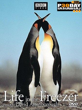 دانلود مستند زندگی در فریزر ( بصورت کامل ) Life in the Freezer 1993