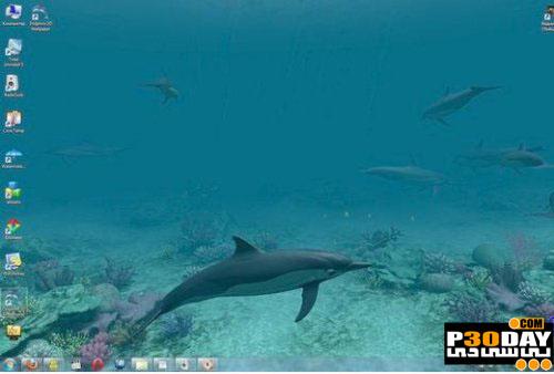 اسکرین سیور جدید و فوق العاده زیبای Dolphins 3D Screensaver 1.0