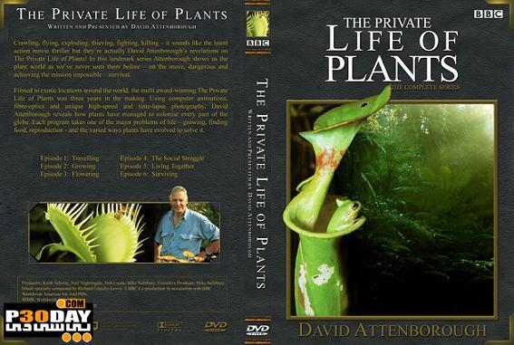 دانلود مستند زندگی خصوصی گیاهان The Private Life of Plants 1995