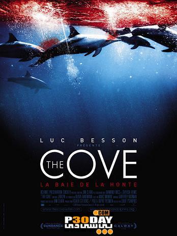 دانلود مستند دیدنی خلیج کوچک The Cove 2009