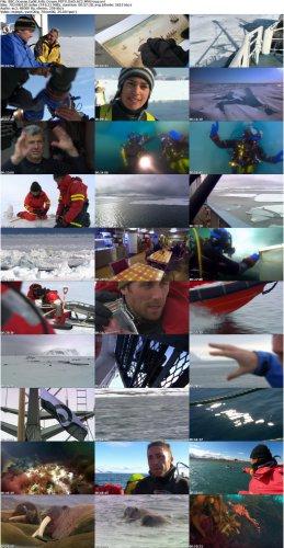 دانلود مستند اقیانوس منجمد شمالی BBC Oceans: Arctic Ocean 2008
