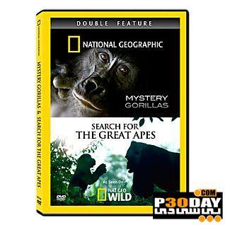دانلود مستند رازهای گوریلها National Geographic – Mystery Gorilla 2010