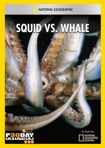 دانلود مستند زیبای National Geographic – Squid Vs Whale 2012