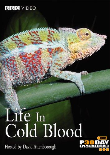 دانلود مستند زندگی خزندگان خونسرد BBC life in cold blood 2008
