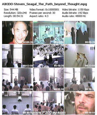 دانلود فیلم آموزشی هنر رزمی آیکیدو Steven Seagal Aikido