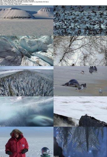 دانلود مستند فوق العاده زیبای سیاره یخی BBC - Frozen Planet