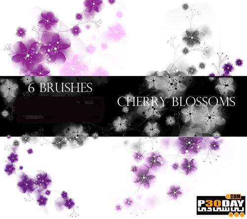 براش فتوشاپ با موضوع شکوفه های گیلاس Cherry Blossoms Photoshop Brushes