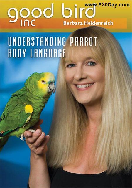 فیلم آموزشی یاد دادن صحبت کردن به طوطی