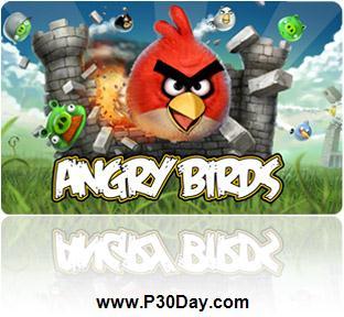 دانلود بازی کامپیوتر پرندگان عصبانی Angry Birds 2.1.0