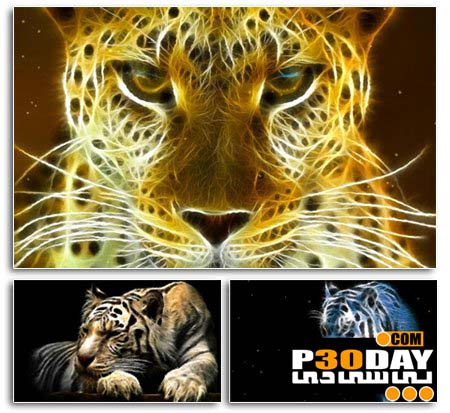 دانلود اسکرین سیور بسیار زیبای Wild Felines Screensaver