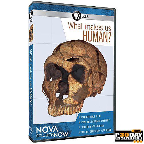 دانلود مستند نحوه شکل گیری انسان ها What Makes Us Human? 2012
