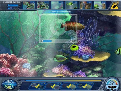 دانلود بازی فکری ماهی های دریای کارائیب Caribbean Sea Fishes Final
