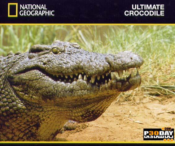 دانلود مستند کروکودیل رود نیل - مرگبارترین و ترسناک ترین قاتل روی زمین