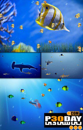 اسکرین سیور فوق العاده زیبای Free Marine Life Aquarium Screensaver