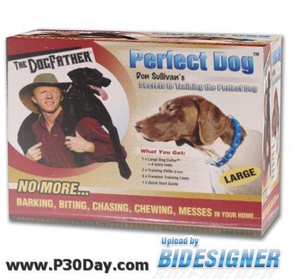 اسرار دان سالیوان برای آموزش کامل سگ Secrets to Training the Perfect Dog