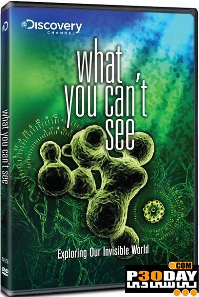 """فیلم مستند جدید """"گونه هایی که دیده نمی شوند"""" What You Can't See"""