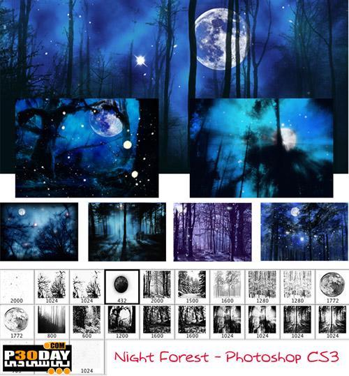 دانلود براش آماده و مخصوص طراحی جنگل در شب Night forest brushes
