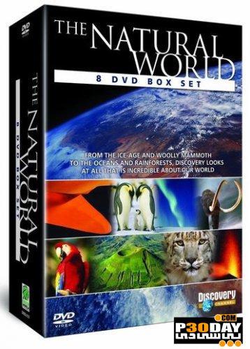 دانلود مستند پادشاهی منجمد و زندگی موجودات در سردترین نقاط دنیا