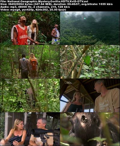 دانلود مستند رازهای گوریلها National Geographic - Mystery Gorilla 2010