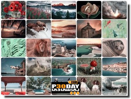 دانلود والپیپر و تصاویر زیبا سایت وب شات Webshots Collection August 2011