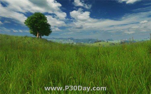 دانلود اسکرین سیور سه بعدی Grassland 3D Screensaver 1.0.0.1