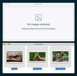 دانلود ExifCleaner v2.1.0 – نرم افزار حذف تگ عکس های دیجیتال