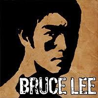 دانلود Bruce Lee Dragon Warrior HD – بازی بروس لی اندروید