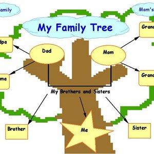 دانلود My Family Tree v9.0.1.0 – ساخت شجره نامه در کامپیوتر