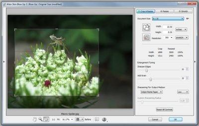 دانلود Alien Skin Blow Up 3.1.3.260 - بزرگنمایی تصاویر بدون افت کیفیت