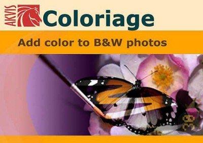 AKVIS Coloriage 10.0.1137.12050 – تبدیل عکس سیاه و سفید به رنگی