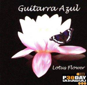 دانلود موسیقی بی کلام فلامینگو و دلنشین Desert Flower