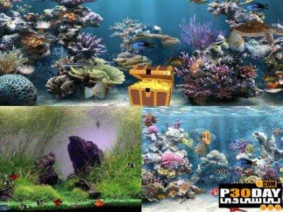 دانلود اسکرین سیور زیبای Clear Aquarium Screensaver