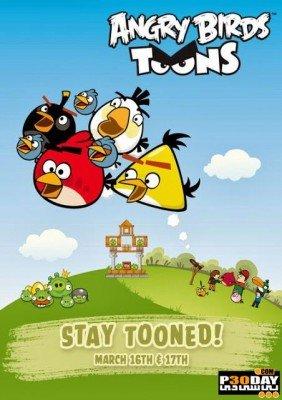 دانلود انیمیشن Angry Birds Toons 2013 فصل اول
