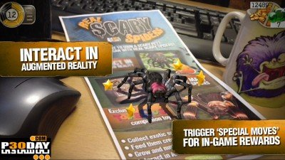 Real Scary Spiders 2