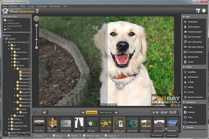 Cost Effective Ashampoo Photo Optimizer Software