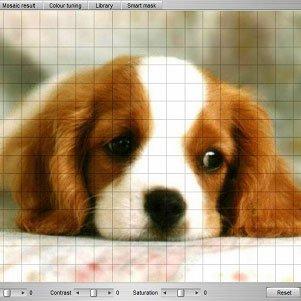 دانلود Mosaizer XV+ v15.0 – ایجاد عکس موازئیک
