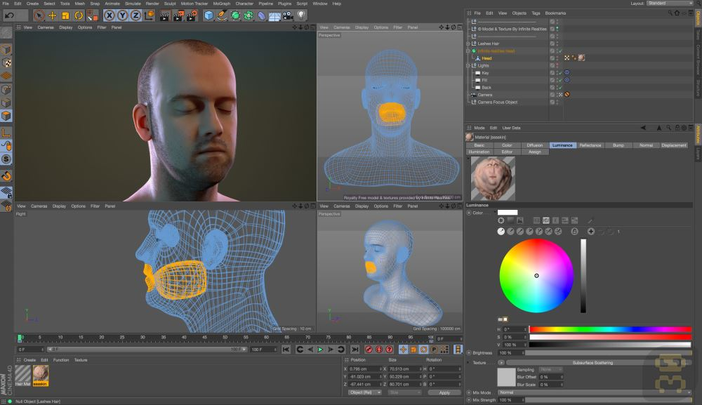 Maxon CINEMA 4D Studio R21.023 - Professional 3D Design