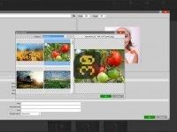 دانلود MailStyler Newsletter Creator Pro v2.5.6.100 - ساخت قالب خبرنامه