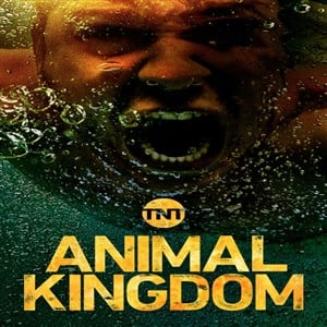 دانلود سریال Animal Kingdom 2018 + زیرنویس فارسی