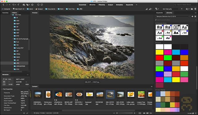 Adobe Bridge CC 2020 V10.0.1.1 - Multimedia File Manager