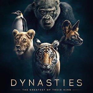دانلود مستند Dynasties 2018 – سلسله + زیرنویس فارسی