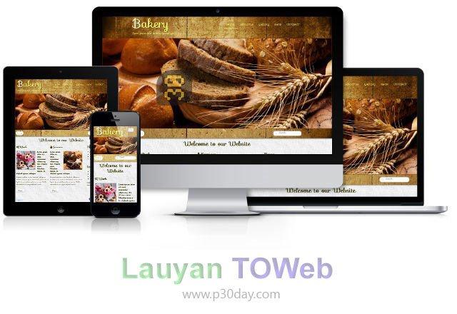 دانلود Lauyan TOWeb 7.2.4.780 - ساخت وبسایت بدون کدنویسی