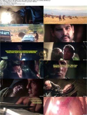 دانلود فیلم Rambo Last Blood 2019 + زیرنویس فارسی