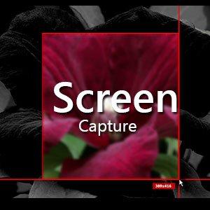 دانلود SPX Instant Screen Capture 7.0 – گرفتن اسکرین شات در ویندوز