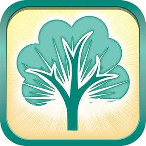 دانلود RootsMagic 7.6.5 – طراحی شجره نامه دیجیتال