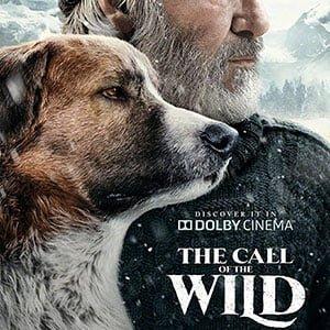 دانلود فیلم The Call of the Wild 2020 با زیرنویس فارسی + 4K