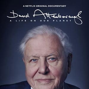 دانلود مستند David Attenborough A Life On Our Planet 2020 با زیرنویس فارسی